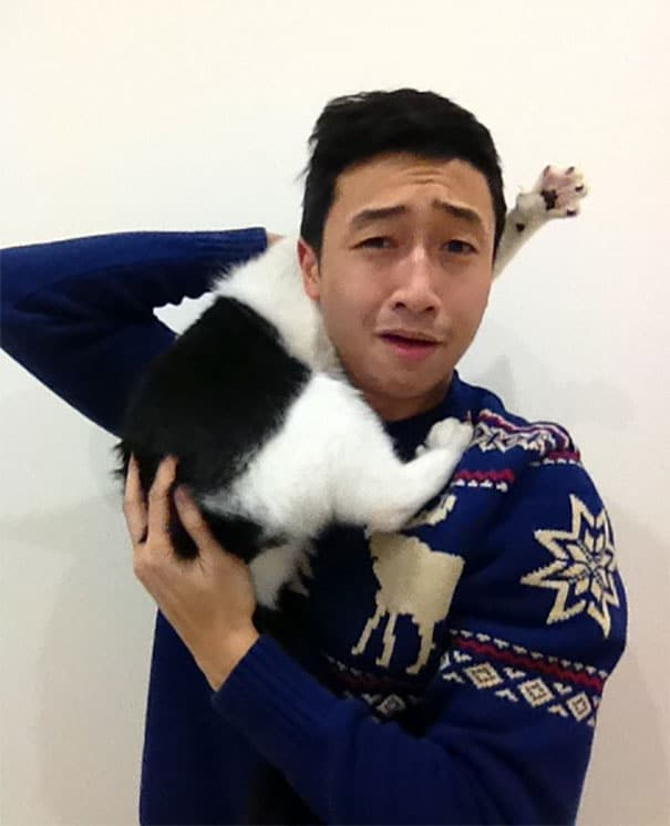 cats-hate-selfies-250-599161072aea3__605 Diajak Selfie, 16 Kucing Ini Malah Bikin Tingkah yang Sukses Bikin Kamu Ketawa