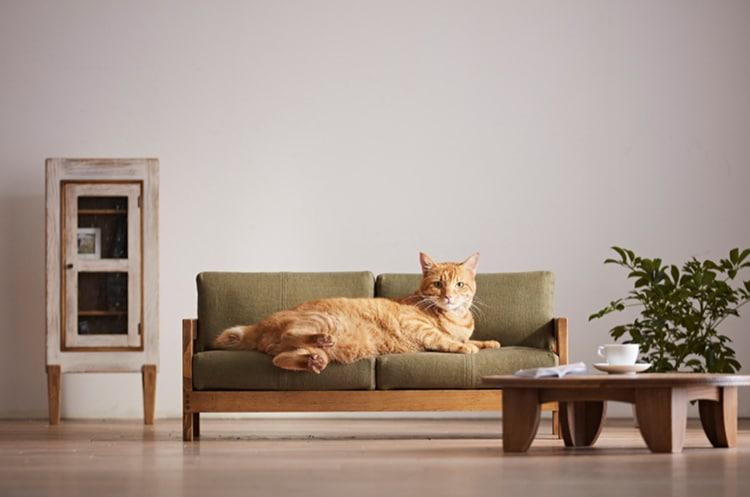 okawa-city-cat-furniture-2 Kini Hadir Furnitur untuk Kucing, Desainnya Bakal Bikin Kamu Ingin Punya!